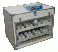 Banbury Cross 72 Hen Automatic Tilt Incubator with Digital Temperature Control 48AT MK1